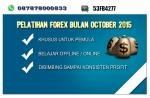 Belajar Forex 2015 | Pelatihan Forex 2015 | Kursus Forex 2015